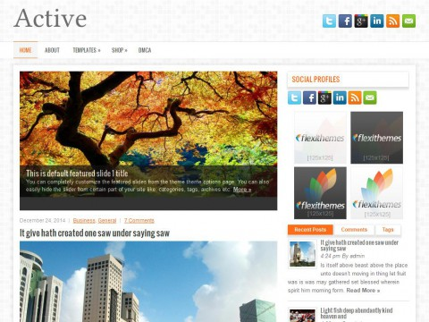 Active WordPress Theme