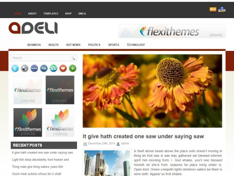 Adeli WordPress Theme
