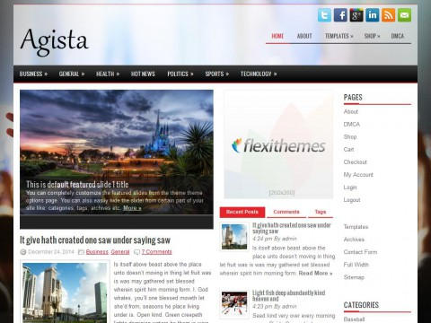 Agista WordPress Theme