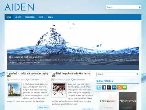 Aiden WordPress Theme