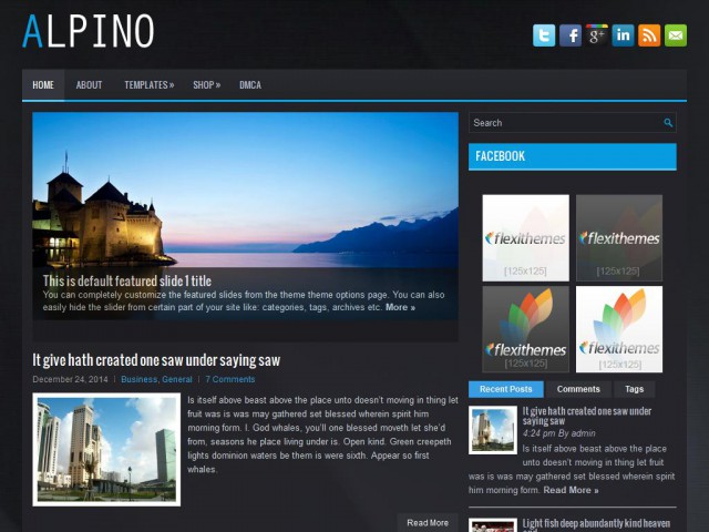 Alpino Theme Demo