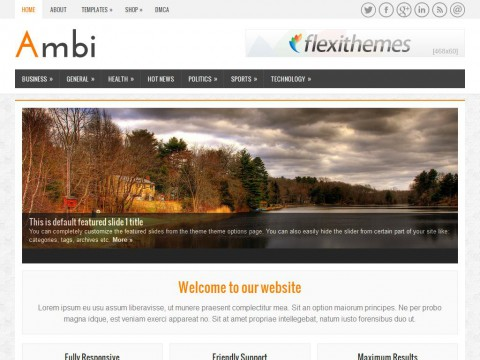 Ambi WordPress Theme