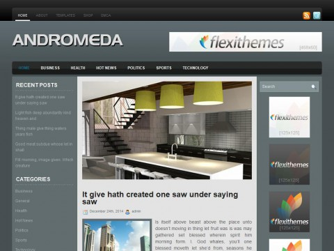 Andromeda WordPress Theme