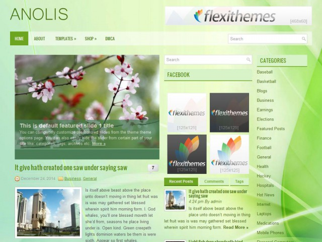 Anolis Theme Demo
