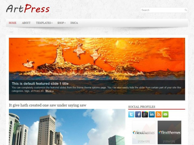 ArtPress Theme Demo