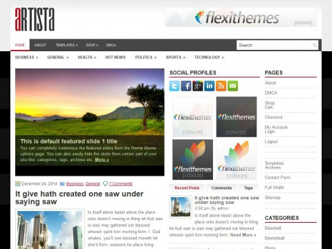 Artista WordPress Theme