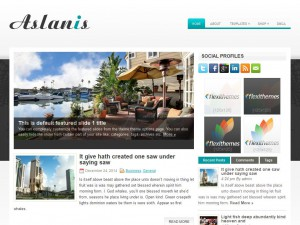 Aslanis WordPress Theme