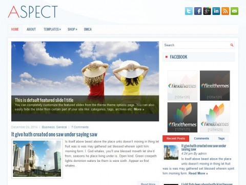 Aspect WordPress Theme
