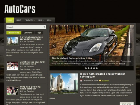 AutoCars WordPress Theme