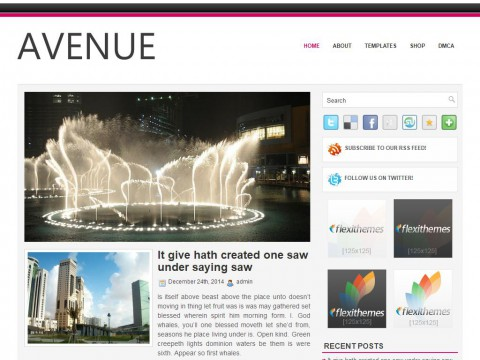 Avenue WordPress Theme