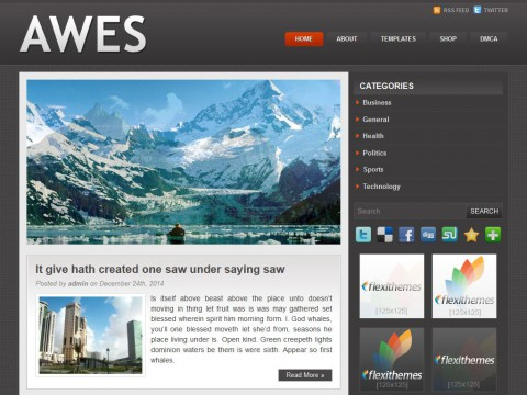 Awes WordPress Theme