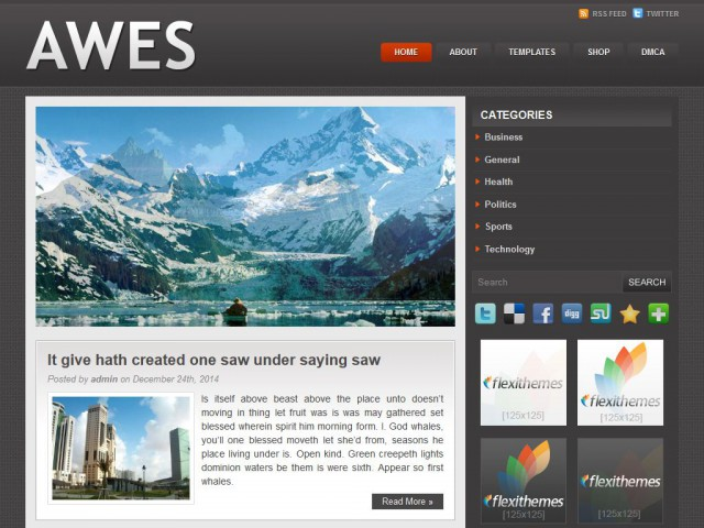 Awes Theme Demo