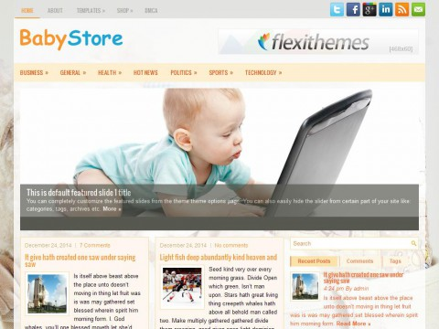 BabyStore WordPress Theme