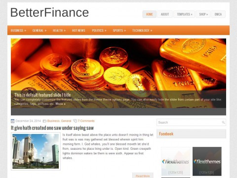 BetterFinance WordPress Theme