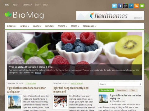 BioMag WordPress Theme
