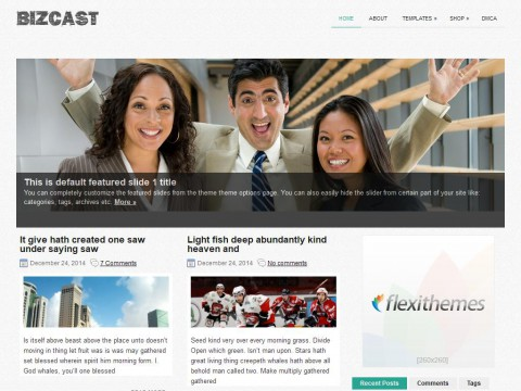 BizCast WordPress Theme