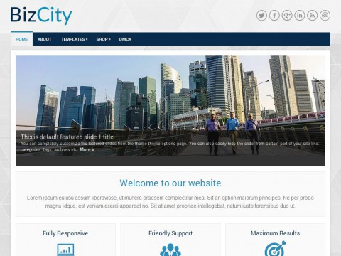 BizCity WordPress Theme