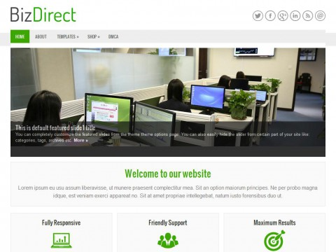BizDirect WordPress Theme
