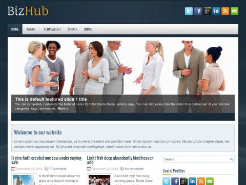 BizHub WordPress Theme
