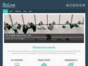 BizLine WordPress Theme
