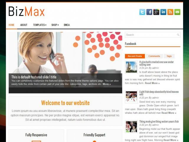 BizMax Theme Demo