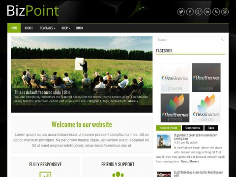 BizPoint WordPress Theme
