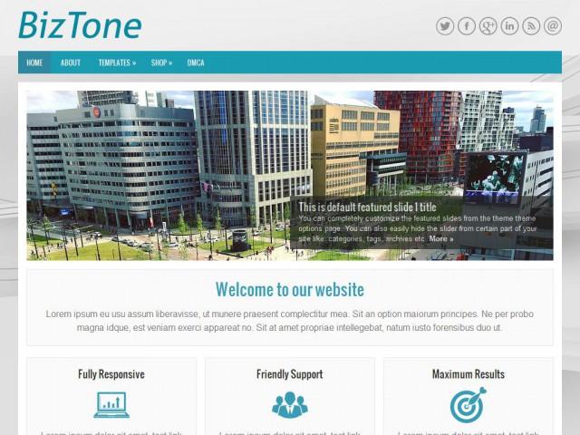BizTone Theme Demo
