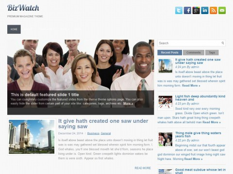 BizWatch WordPress Theme