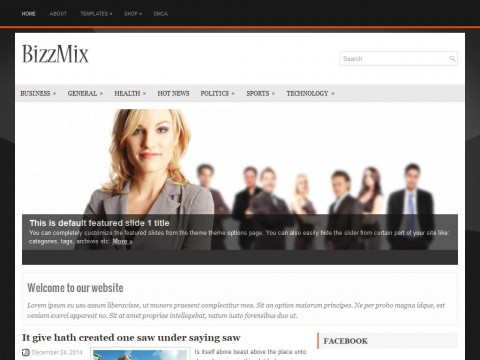 BizzMix WordPress Theme