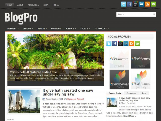 BlogPro Theme Demo