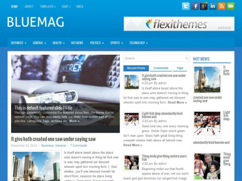 BlueMag WordPress Theme