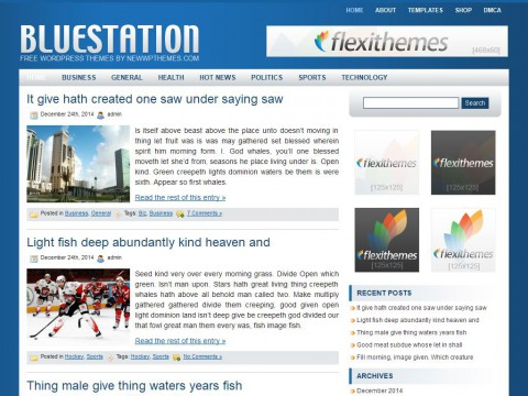 Blue Station WordPress Theme