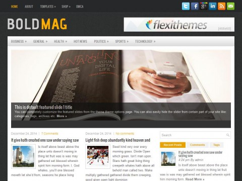 BoldMag WordPress Theme