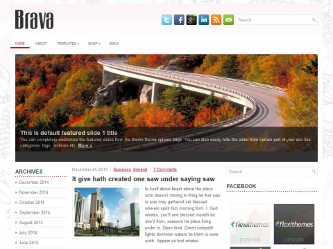 Brava WordPress Theme