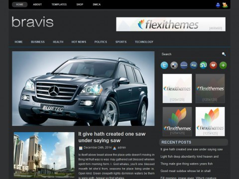 Bravis WordPress Theme