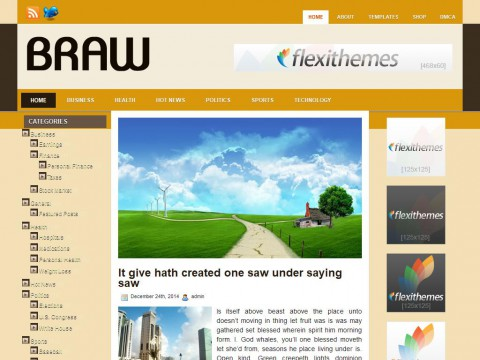 Braw WordPress Theme