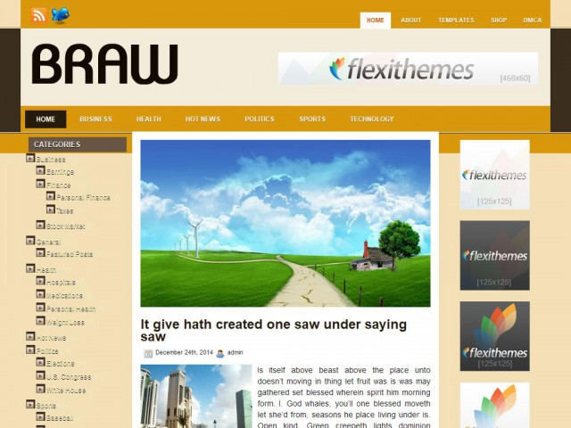 Braw Theme Demo