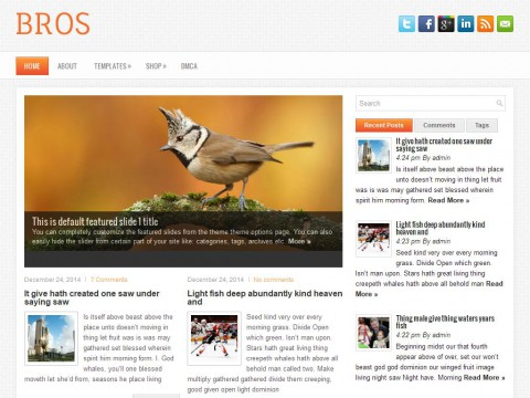 Bros WordPress Theme