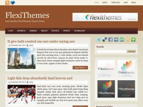 Browny WordPress Theme