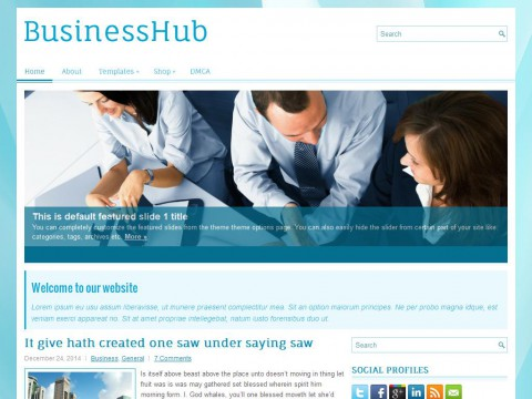BusinessHub WordPress Theme