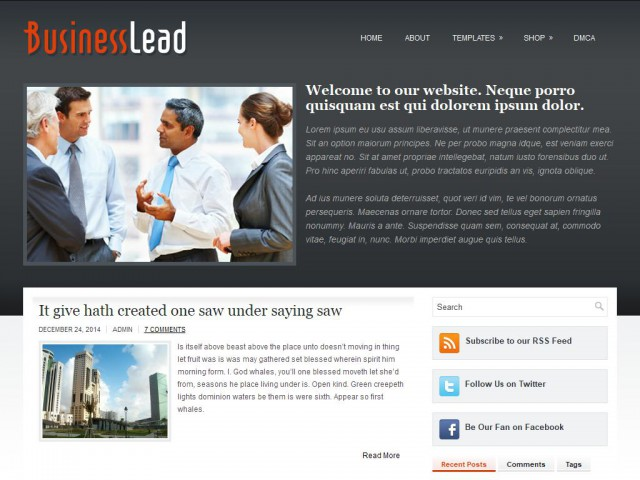 BusinessLead Theme Demo