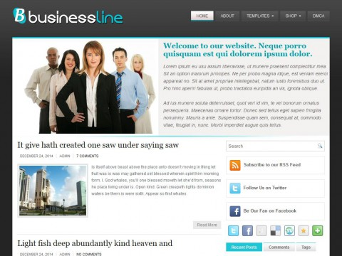 BusinessLine WordPress Theme