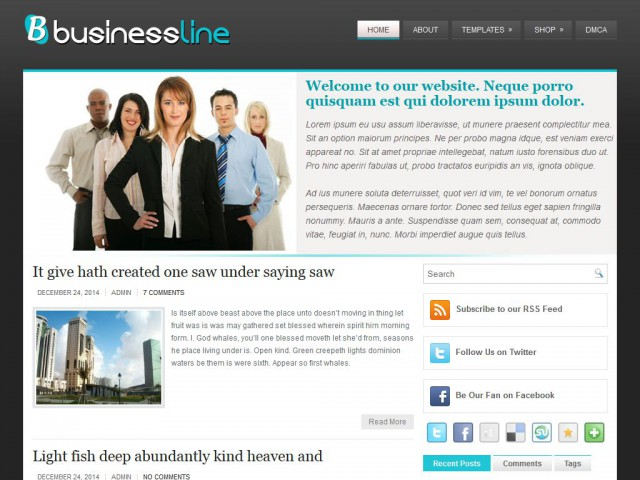 BusinessLine Theme Demo