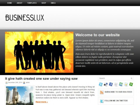 BusinessLux WordPress Theme
