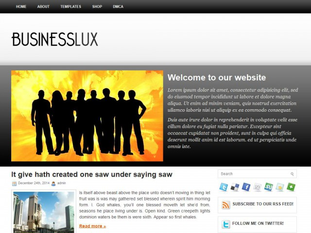 BusinessLux Theme Demo