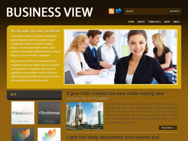 Business View Theme Demo