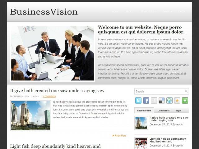 BusinessVision Theme Demo