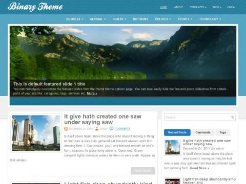 Bynary WordPress Theme