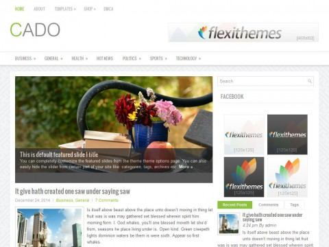 Cado WordPress Theme