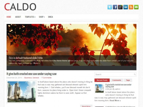 Caldo WordPress Theme